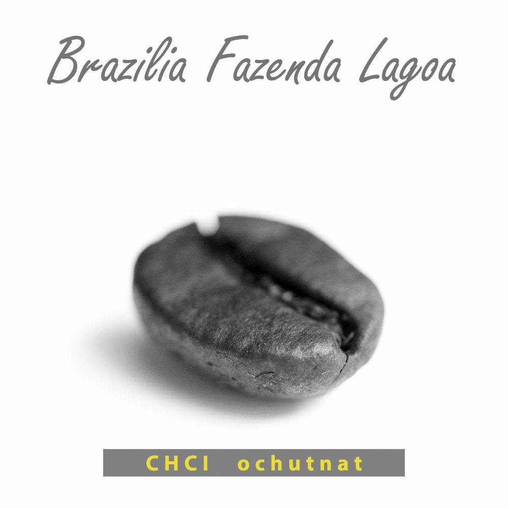 brazilská káva - Fazenda Lagoa
